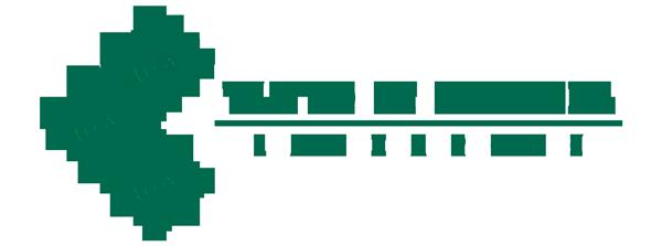 Logotipo Teatro de la Danza Lanzarote 600